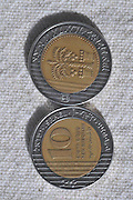 Ten New Israeli Shekel coin