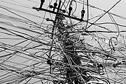 PATNA, INDIA, - SEPTEMBER 17: An electricity pole festooned with multiple wires illegally tapping into the power supply in the Police Lines colony in Patna, India on September 17, 2015. <br />  PHOTOGRAPH BY AND COPYRIGHT OF SIMON DE TREY-WHITE, + 91 98103 99809, <br /> email: simon@simondetreywhite.com, a photographer in delhi<br /> <br /> In Bihar, 30 percent of power is lost to transmission and distribution as well as theft. Of the world's 1.3billion people who live without access to power, a quarter — about 300million — live in rural India in states such as Bihar. India, the third-largest emitter of greenhouses gases after China and the United States, has taken steps to address climate change in advance of the global talks in Paris in 2015 — pledging a steep increase in renewable energy by 2030. But India's leaders say that the huge challenge of extending electric service to its citizens means that the country must continue to increase its fossil fuel consumption, at least in the near term, on a path that could mean a threefold increase in greenhouse-gas emissions by 2030, according to some estimates. Energy access is worse in rural areas. Bihar, one of India's poorest states, has a population of 103 million, nearly a third the size of the United States. Fewer have electricity as the primary source of lighting there than in any other place in India, just over 16 percent, according to 2011 census data. Families still light their homes with kerosene lamps and cook on clay stoves with cow-dung patties or kindling.