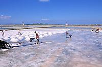Italie. Sicile. Saline entre Trapani et Marsala. //  Salt mine bitween Trapani and Marsala. Sicily. Italy.