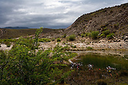 MTB - DCM Cape Pioneer 2010 Stage 6