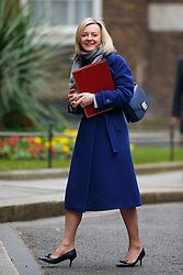 © Licensed to London News Pictures. 16/03/2016. London, UK. Environment, Food and Rural Affairs Secretary, LIZ TRUSS attending to a cabinet meeting in Downing Street on the Budget Day, Wednesday, 16 March 2016. Photo credit: Tolga Akmen/LNP