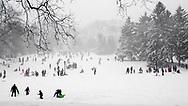 Sledding at Cedar Hill in Central Park.