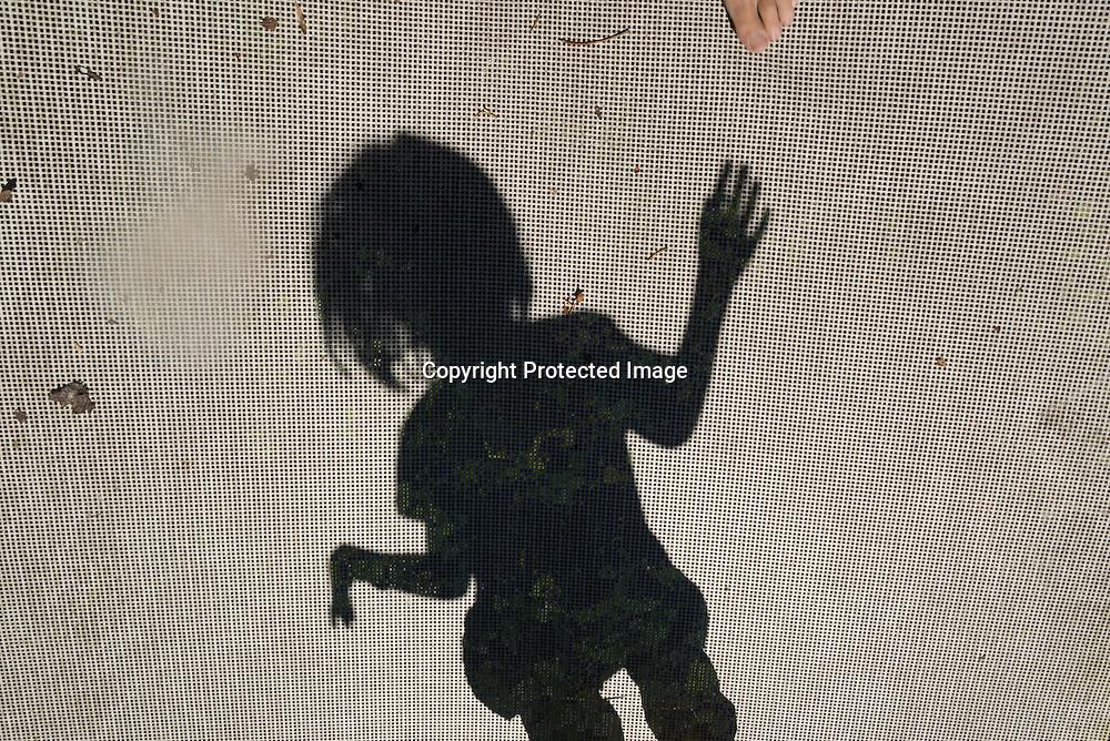 France Paris area, Orgeval /  ombres des enfants sautant sur un trampoline