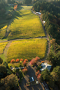 Aerial view over Kramer winery and estate vineyard, Yamhill-Carltson AVA, Willamette Valley, Oregon