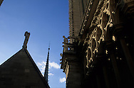 France. Paris. Notre Dame cathedral. Notre dame cathedral . . view from the roofs.