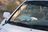 Smashed car windshield