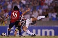 20091118: RIO DE JANEIRO, BRAZIL - South-American Cup 2009, Semi-Finals: Fluminense vs Cerro Porteno. In picture: Fred (Fluminense). PHOTO: CITYFILES