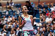 2017 U.S.Open Championship. USTA Billie Jean King National Tennis Center, Queens, New York. Photograph by Darren Carroll/USTA