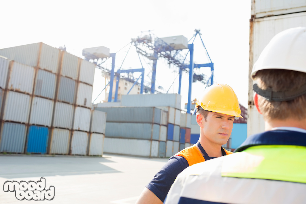 Male workers standing in shipping yard