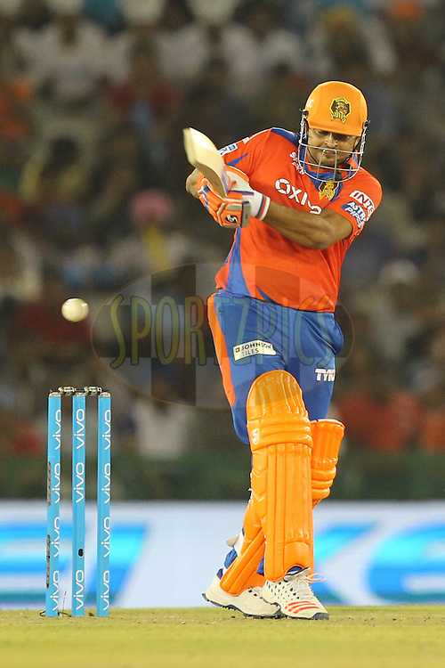 Suresh Raina captain of Gujrat Lions in action during match 3 of the Vivo Indian Premier League ( IPL ) 2016 between the Kings XI Punjab and the Gujarat Lions held at the IS Bindra Stadium, Mohali, India on the 11th April 2016Photo by Prashant Bhoot/ IPL/ SPORTZPICS