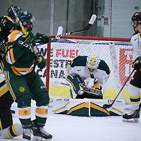 3rd year goalie Dawson MacAuley (31) of the Regina Cougars in action during the Men's Hockey Home Game on October 28 at Co-operators arena. Credit: Arthur Ward/Arthur Images