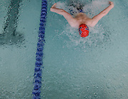 Lincoln-Sudbury Regional High School freshman Patrick McNulty swims the butterfly length of the 200 medley relay during the DCL meet at Atkinson Pool in Sudbury, Jan. 31, 2015.   (Wicked Local Photo/James Jesson)