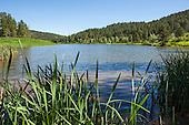 Cook Lake