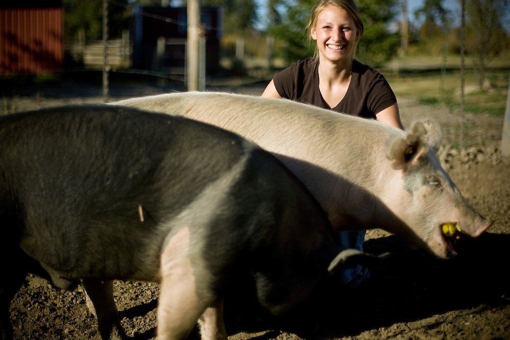 JEROME A. POLLOS/Press..Heather Holton, a member of the Jolly Worker's 4-H Club of Mica Flats, earned a grand champion this year for market swine. Compared to the participation rate last year, this year's club was a complete turnaround with increased membership and one of the highest completion rates in Kootenai County which helped the Jolly Worker's earn an Outstanding 4-H Club of 2007.