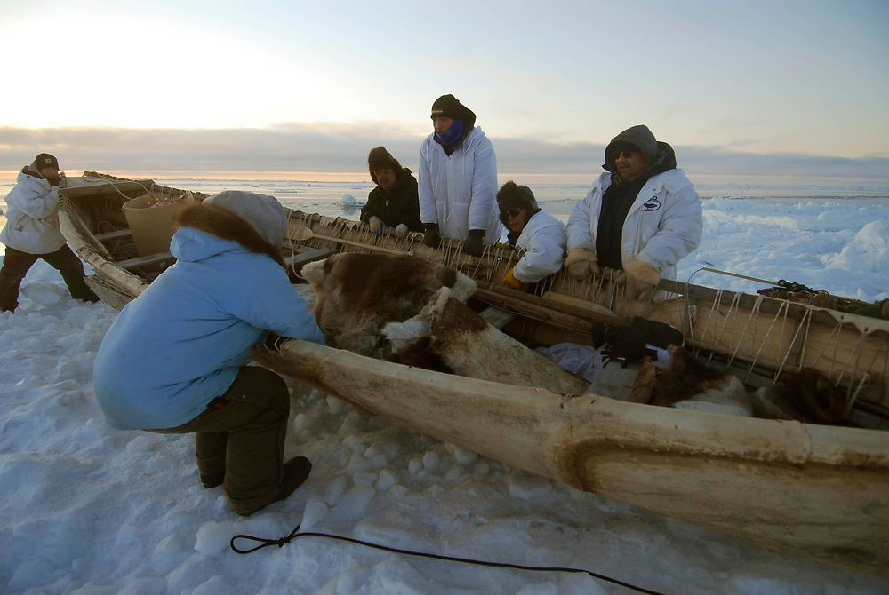 Alaska, Barrow. Whaler at whaling camp on the edge of the shorefast ice of the frozen Arctic ocean. Hopson Crew whaling camp. The crew pulls up camp to safer ice due to wind, current and ice floes.  (model release)