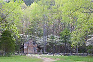 66745-04401 John Oliver Cabin in spring, Cades Cove area, Great Smoky Mountains National Park, TN