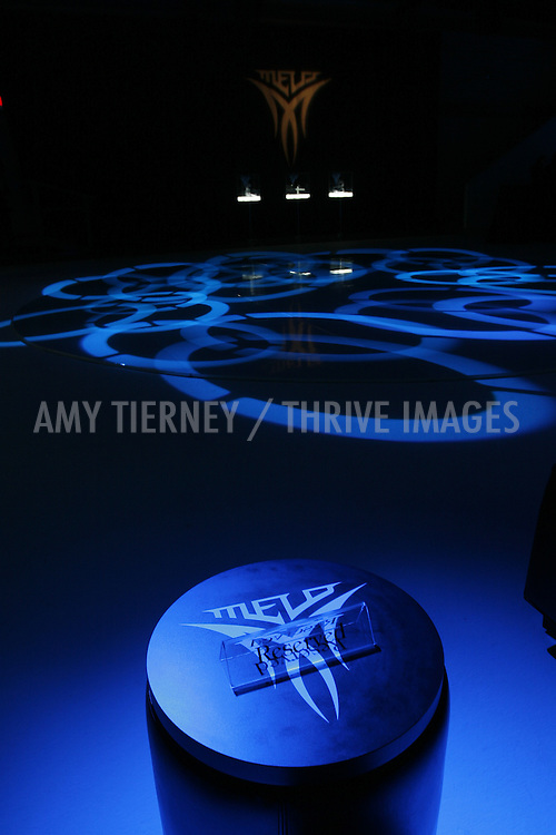 Decor - BolthouseVox, at Carmelo Anthony's Melo Shoe Launch
