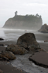 Sea stack on Ruby Beach at morning with foggy mist, Olympic National Park, Washington, United States of America