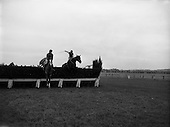 1962 - Horse Racing - Celbridge Handicap Steeplechase at Naas