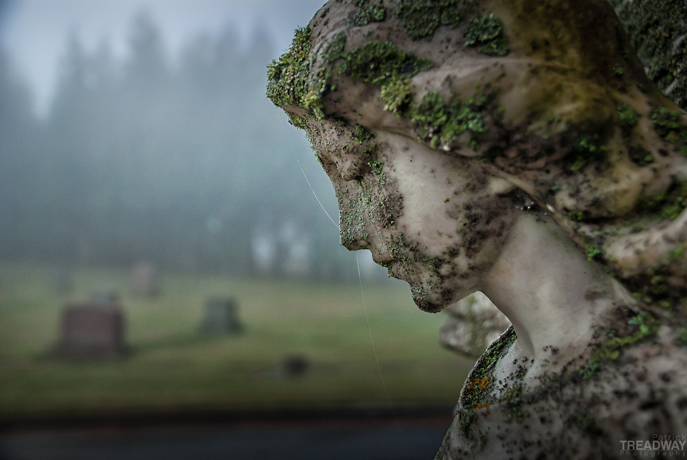 A mossy angel on a foggy day in Mt. Calvary Catholic Cemetery in Portland, Oregon.