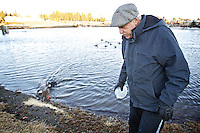 David Albertini walks away from the shoreline of the Riverstone pond after dumping a bowlful of feed Tuesday for four ducks he's been feeding since he realized they couldn't fly in November.