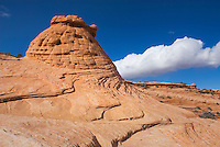 Red buttes and slickrock, Vermilion Cliffs Wilderness Utah