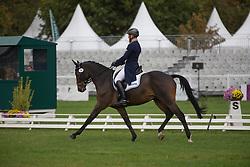 Jung Michael (GER) - Star Connection<br /> Dressage 6 years old horses<br /> Mondial du Lion - Le Lion d'Angers 2014<br /> © Dirk Caremans<br /> 17/10/14
