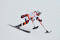Anna Jochemsen, Women's Giant Slalom at the 2014 Sochi Winter Paralympic Games, Russia