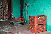 Fresh vegetables are packed into crates to be delivered to buyers from the collection centre in Machahi village, Muzaffarpur, Bihar, India on October 27th, 2016. Non-profit organisation Technoserve works with women vegetable farmers in Muzaffarpur, providing technical support in forward linkage, streamlining their business models and linking them directly to an international market through Electronic Trading Platforms. Photograph by Suzanne Lee for Technoserve