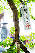 En lapp i ett tr&auml;d utmed pilgrimsvandringen p&aring; &ouml;n Shikoku i Japan. <br />