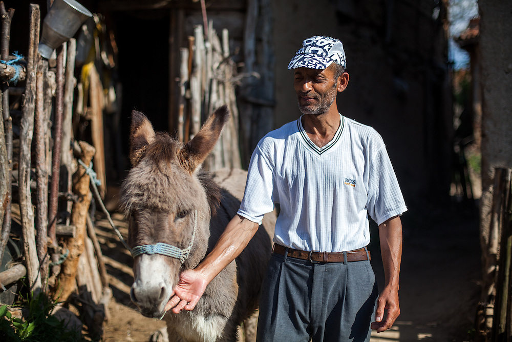 Portrait of a man with his donkey at the Roma part in the city of Crnik.
