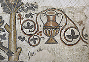 Mosaic of vase and floral motifs from the floor of the chapel of the Church of the Acropolis at Ma'in, Jordan, built 719-20, which forms part of the Archeological Park of Madaba. The iconoclastic conflict of the 8th century is in evidence here with the obliteration of a biblical scene from the Book of Isaiah and its later substitution by floral motifs. Picture by Manuel Cohen