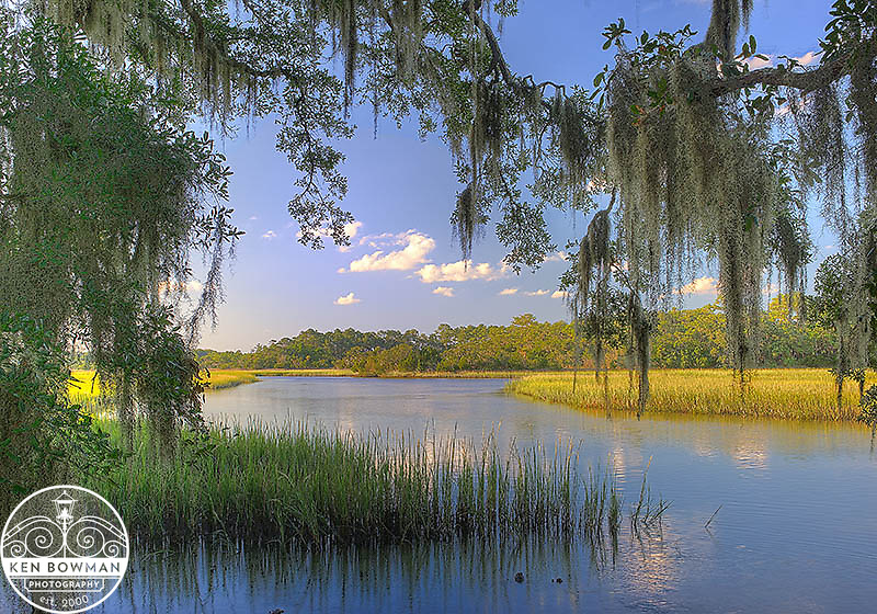 Botany Bay marsh. End of summer.