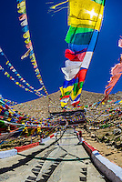 Prayer flags on the summit, Changla Pass (third highest motorable road in the world), Ladakh, Jammu and Kashmir State, India.