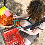 Kim, a Victory Farm CSA member, chooses tomatoes at her local CSA pickup in Bryan Park. Kim said she chose to participate in the CSA because she would know where her food came from, and she knew it would be tasty.