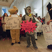 From left, Heather Myers, Sharon Cobaugh, Jennifer Kesecker and Ashley Bowman demonstrate in animal costumes at the West Virginia State Capitol on the second day of the teacher walkout in Charleston, W.V., on Friday, February 23, 2018. All four are teachers from Eagle School Intermediate in Berkley County.