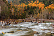 Bear Creek at the confuence of the Middle Fork of the Flathead River in the Flathead National Forest, Montana, USA