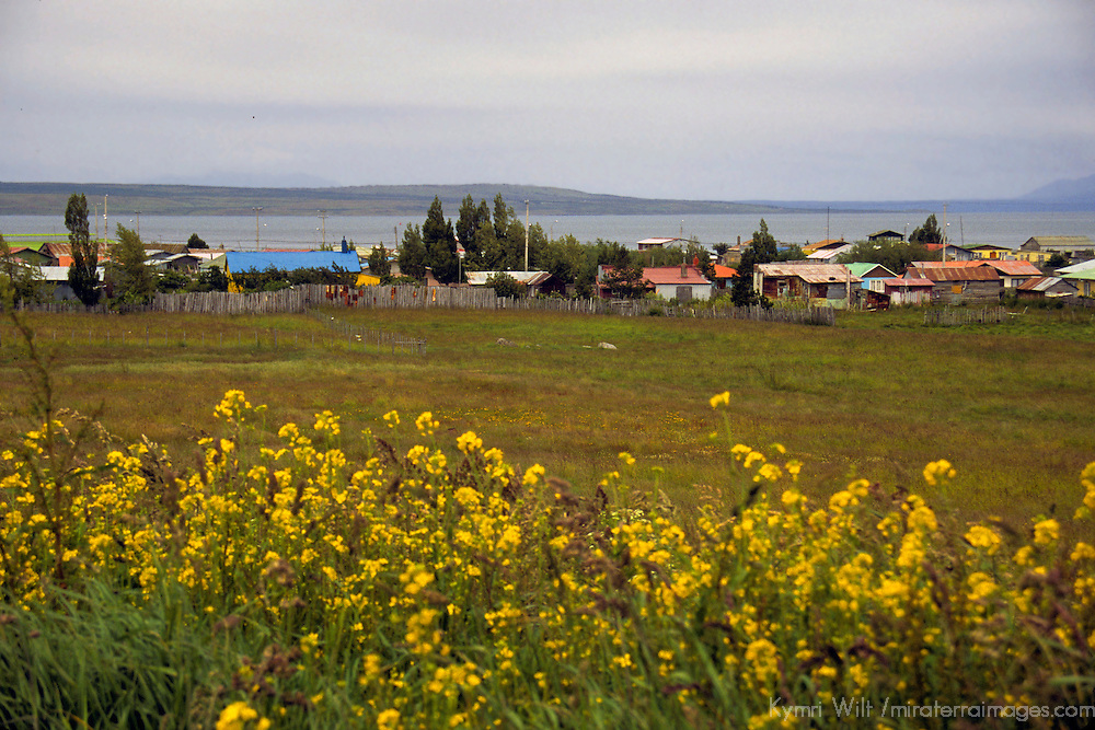 Americas, South America, Chile, Puerto Natales. Flowers, fields, houses and the sea - a typicial vista in the Magallanes town of Puerto Natales.
