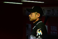 PHOENIX, AZ - JUNE 12:  Ichiro Suzuki #51 of the Miami Marlins watches the game from the dugout in the eighth inning against the Arizona Diamondbacks at Chase Field on June 12, 2016 in Phoenix, Arizona.  The Arizona Diamondbacks won 6-0.  (Photo by Jennifer Stewart/Getty Images)