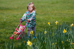 © Licensed to London News Pictures. 03/04/2016. London, UK. Children enjoying sunshine and warm weather in Green Park, London on Sunday, 3 April 2016. Photo credit: Tolga Akmen/LNP