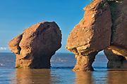 Hopewell Rocks , Cape Hopewell Rocks, New Brunswick, Canada<br />Cape Hopewell Rocks<br />New Brunswick<br />Canada
