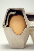 side view of single egg in carton