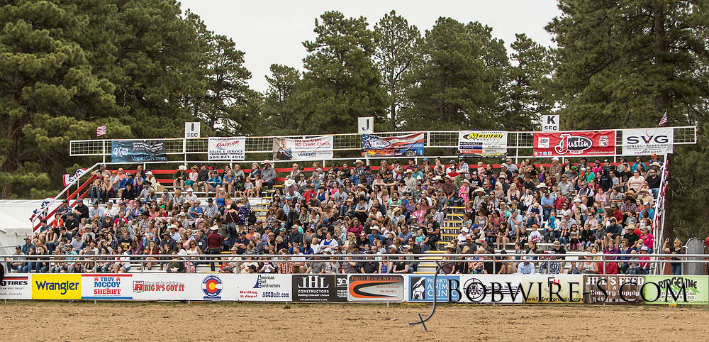 Rodeo fans enjoy the third performance of the Elizabeth Stampede on Sunday, June 3, 2018.