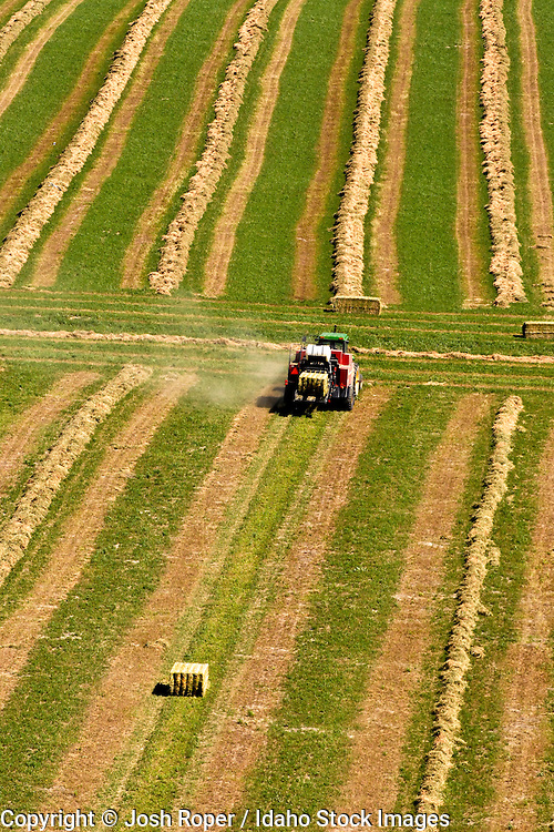 Idaho. Aerial of green fields  and a tractor working on a farm in summer in Southwestern Idaho.