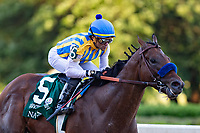 HOT SPRINGS, AR - MAY 02:  Jockey Martin Garcia rides #5 Nadal down the stretch to the win during the 84th running of The Arkansas Derby Grade 2 at Oaklawn Racing Casino Resort on Derby Day during the Covid-19 Pandemic on May 2, 2020 in Hot Springs, Arkansas. (Photo by Wesley Hitt/Getty Images)