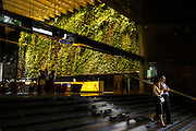 """People walk past the """"Rainforest Rhapsody,"""" a 2000 square foot indoor vertical garden installed in the lobby of Six Battery Road that contains 120 plant species. In Singapore, skyrise greenery helps to reduce the urban heat island effect, contributing to the city beautification efforts and bringing nature back into its skyscraper office buildings in the central business district. Photo by Suzanne Lee/Panos Pictures"""