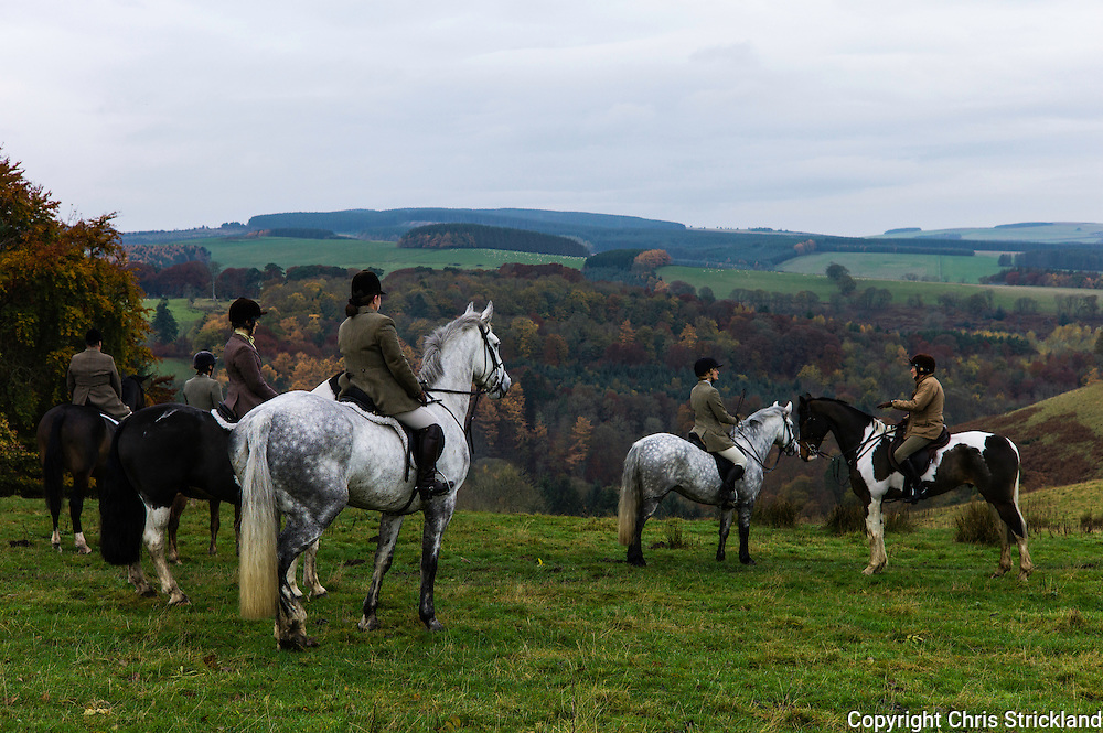 Edgerston, Jedburgh, Scottish Borders, UK. 5th November 2015. Mounted followers of the Jedforest Hunt against a backdrop of autumnal colours during autumn hunting.