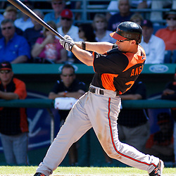 March 7, 2011; Fort Myers, FL, USA; Baltimore Orioles left fielder Matt Angle (38) during a spring training exhibition game against the Boston Red Sox at City of Palms Park.   Mandatory Credit: Derick E. Hingle
