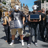 Animal Rights protest against cow exploitation