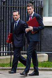 © Licensed to London News Pictures. 13/03/2018. London, UK. Defence Secretary Gavin Williamson (R) and Secretary of State for Wales Alun Cairns (L) on Downing Street for the Cabinet meeting. Photo credit: Rob Pinney/LNP